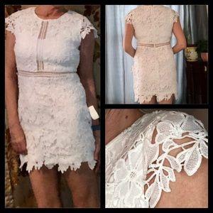 NWT Main Strip White Lace Dress